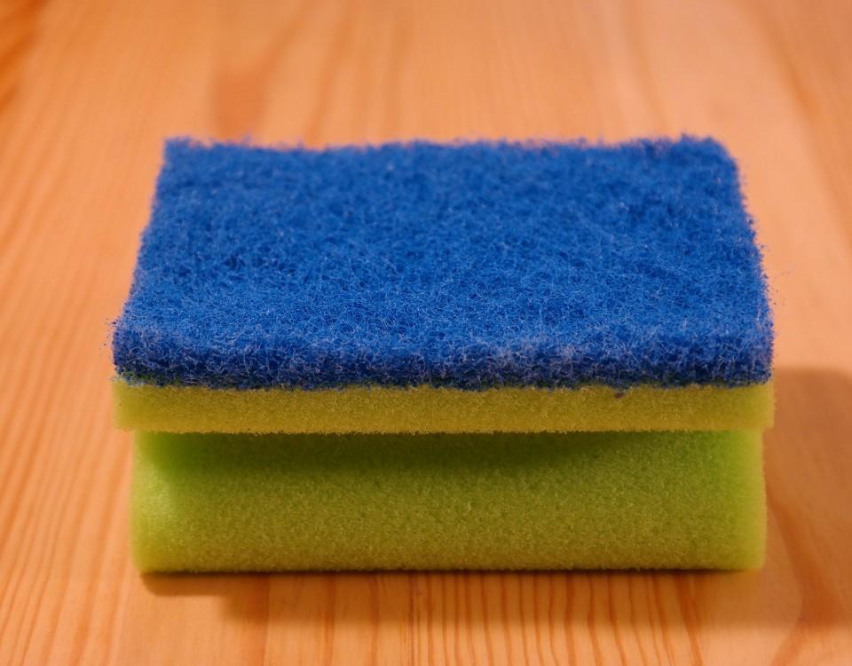 sponge-231922_1920